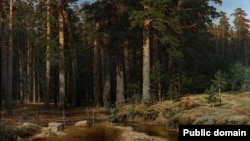 Іван Шышкін «Карабельны гай» (1898)