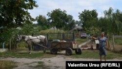 Сынжерей, Молдова