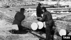 Работа заключенных в Озерлаге, 1950 год
