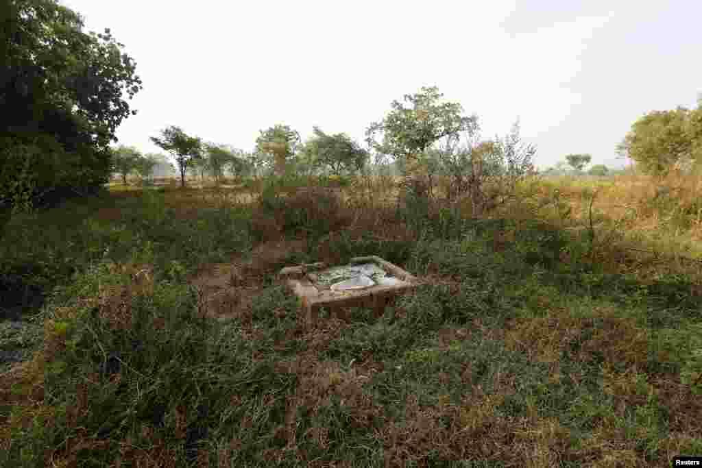 Адкрытая прыбіральня ў полі Горба ў Індыі.