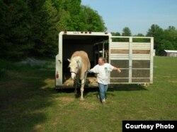 Предстоящая езда радость для хозяйки и для лошади