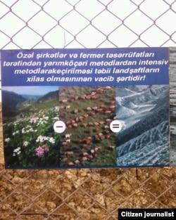 Gül-çiçək +qoyun bərabərdir landşaft)))))))))))))))