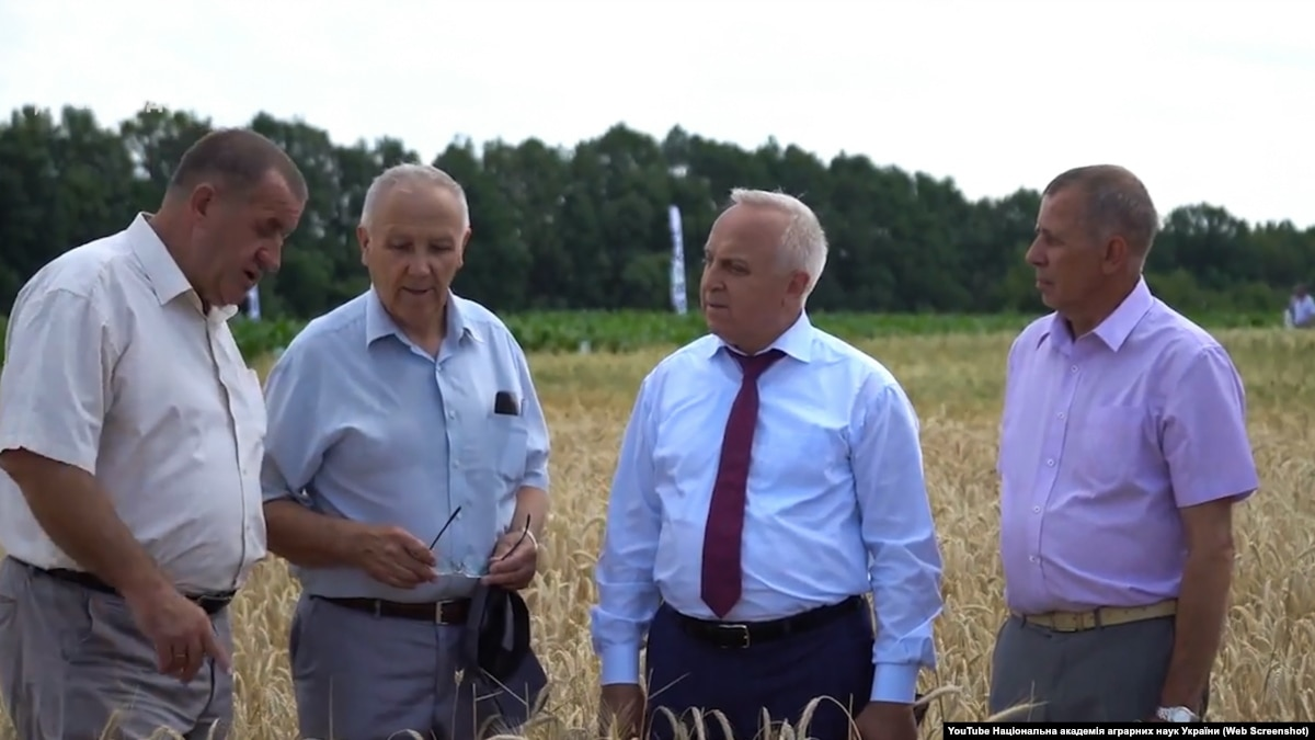 «Схеми» показали, як керівництво Академії аграрних наук отримує державну землю для себе та родичів