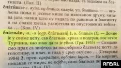 Navodi iz problematičnih dijelova Rječnika CANU-a