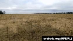 «Не хапае Лукашэнак і Пуціных», каб засеяць палі вакол памежных зь Беларусьсю вёсках