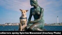 Ucraina -- Ciapatî