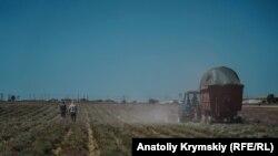 Дія мораторію на продаж землі сільськогосподарського призначеннязавершується 1 січня 2020 року