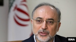 Iranian nuclear agency chief Ali Akbar Salehi said 25 kilograms of uranium had been produced at a 20 percent purity level so far.