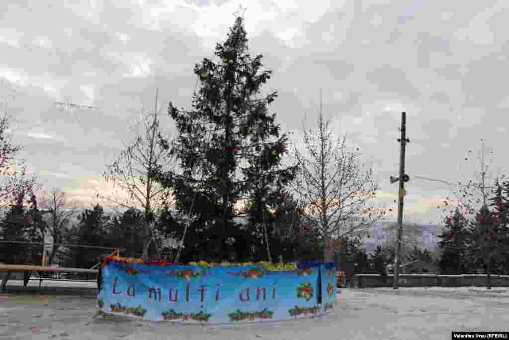 O zi de iarnă 2018 la Călărași...