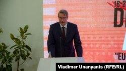 Посол ЕС в Грузии Карл Харцель на конференции Desinfo Alert 2019