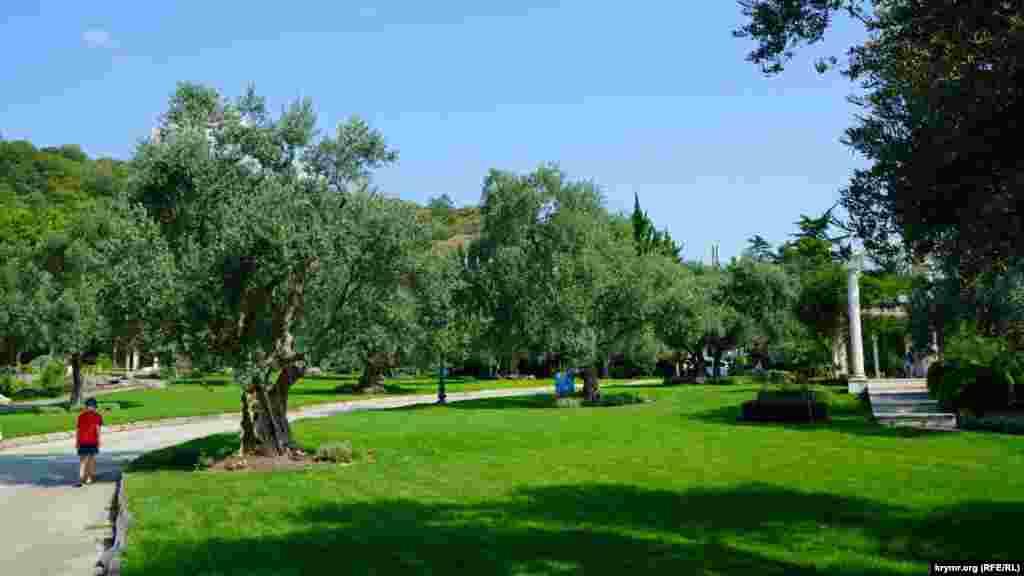 Справжнє надбання парку – оливковий гай в античному саду. Всі 26 олив плодоносять і щорічно дають близько двох тонн товарних плодів. Самому саду понад 200 років.