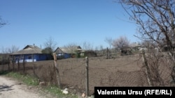 În sat la Călimănești.