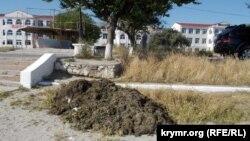 Купа гнилих водоростей на пляжі «Омега» в Севастополі. Червень 2015 року