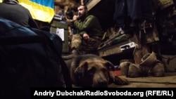 Бліндаж на позиції українських військових у посадках під містом Попасна