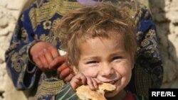 ارشیف، په یوه پنډغالي کې افغان کډوال