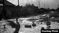 Ядерное лето в Муслюмове. Челябинцы годами использовали воду из Течи, не подозревая, что она заражена радионуклидами