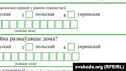 Моўныя пытаньні перапісу 2019 г.