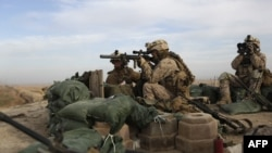 U.S. Marines take position on a rooftop in Marjah today.