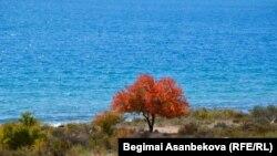 Иссык-Куль, село Бостери.