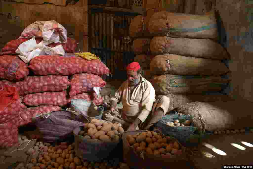 A worker sorts potatoes at a market in Karachi, Pakistan. (epa-EFE/Shahzaib Akber)