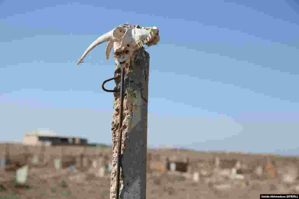 На вершине столба у кладбища замечен череп животного. На вопрос: «Зачем?» - жители ответили: «От злых духов», пояснив, что это доисламская традиция.