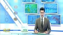 Türkmen prezidenti TW boýunça ýokary wezipeli resmini işden boşatdy, 'media ösüşleri wagyz etmeli'