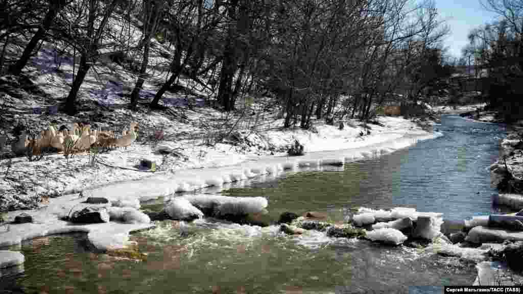 Річка Бодрак у селі Скалисте Бахчисарайського району