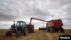Власти Узбекистана требуют от фермеров отдать им весь урожай пшеницы.