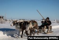 Семья ненцев забрала детей в школе-интернате в Советском и едет в Воркуту