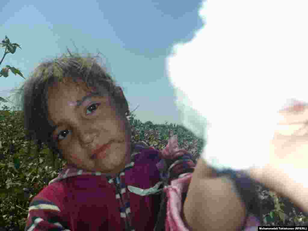 A child picks cotton in Osh, southern Kyrgyzstan. Children in Uzbekistan and Kyrgyzstan are frequently sent to the fields to pick cotton by hand.