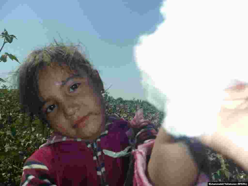 A young girl picks cotton near the Kyrgyz city of Osh.
