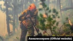 Лесные пожары в Красноярском крае России