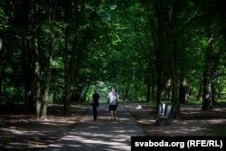 Румлёўскі парк