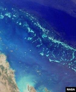 Большой Барьерный риф. Снимок из космоса