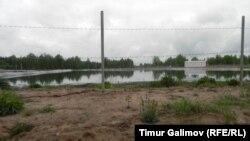 """На берегу навозной """"лагуны"""""""