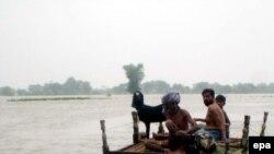 سیل در پاکستان؛ میلیونها آواره، هزاران قربانی