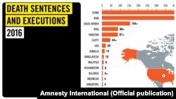 سازمان عفو بینالملل تاکید کرده به دلیل کاهش شمار اعدامها در ایران و نیز پاکستان، آمار سال گذشته که خود آماری کمسابقه بود، کاهش پیدا کردهاست