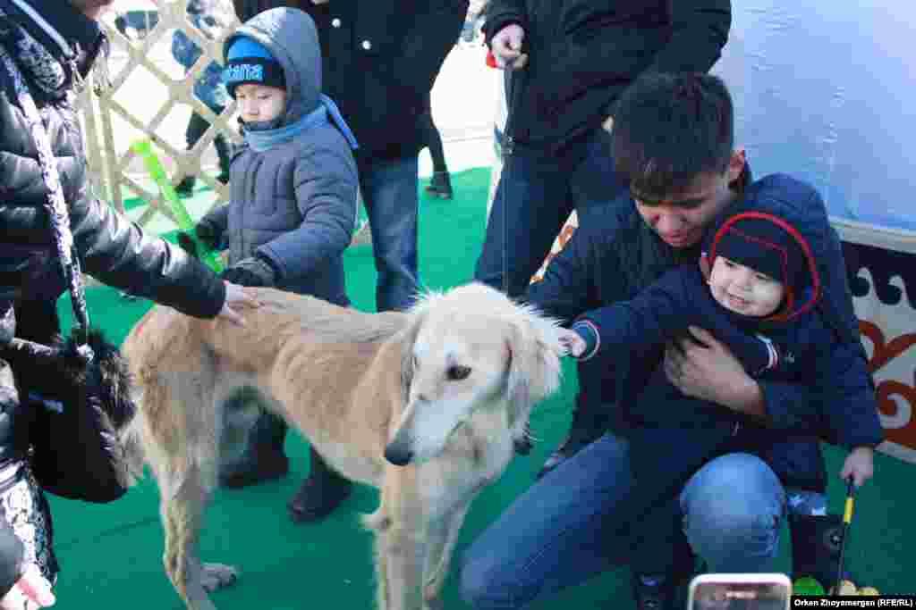 Дети играются с собакой.