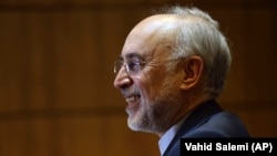 Iranian nuclear chief Ali Akbar Salehi. File photo