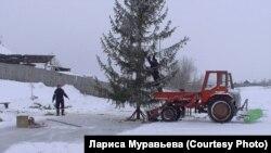 Подготовка катка и установка новогодней елки в Гусево