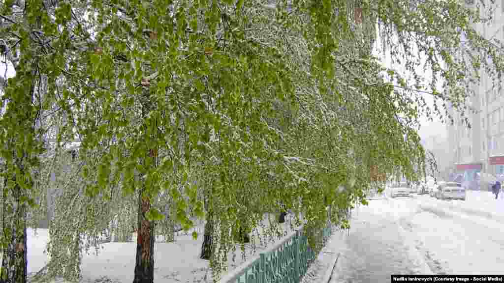 Зима і літо зовсім поруч