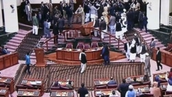 Afghan Lawmakers Brawl As New Speaker Tries To Take Seat