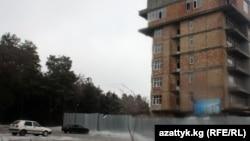"""Бишкектеги """"Ата-Түрк"""" паркындагы бак-дарактарды аёосуз кыйып, бул жерге үй салынган."""