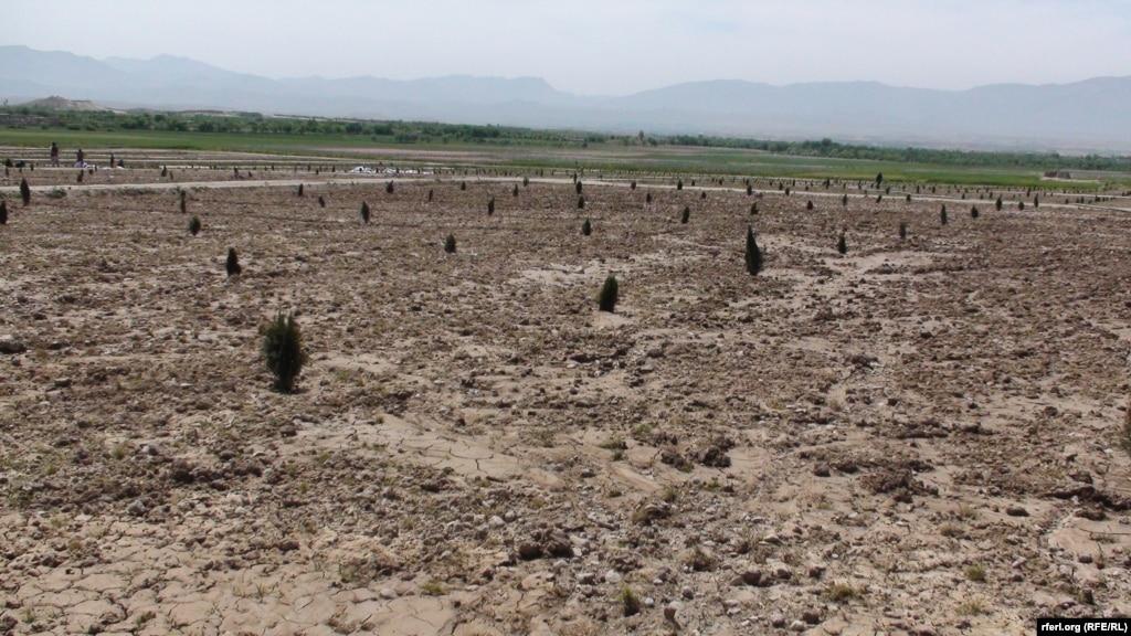 رحمانی: در ۳۴ ولایت افغانستان ۱،۳ میلیون جریب زمین غصب شدهاست
