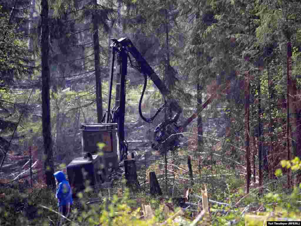 Комбайн, производящий вырубку Химкинского леса