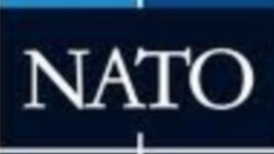 Amerikan ilçisi: NATO iň täsirli goranyş ýaranlygy