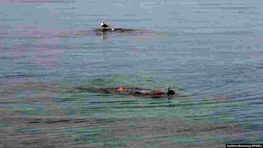 Каспий теңізінде гарпунмен балық атып жүрген адам. Ақтау, 2 тамыз 2014 жыл.