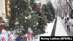 Новогодние елки у медицинского колледжа в Алматы. 20 декабря 2014 года.