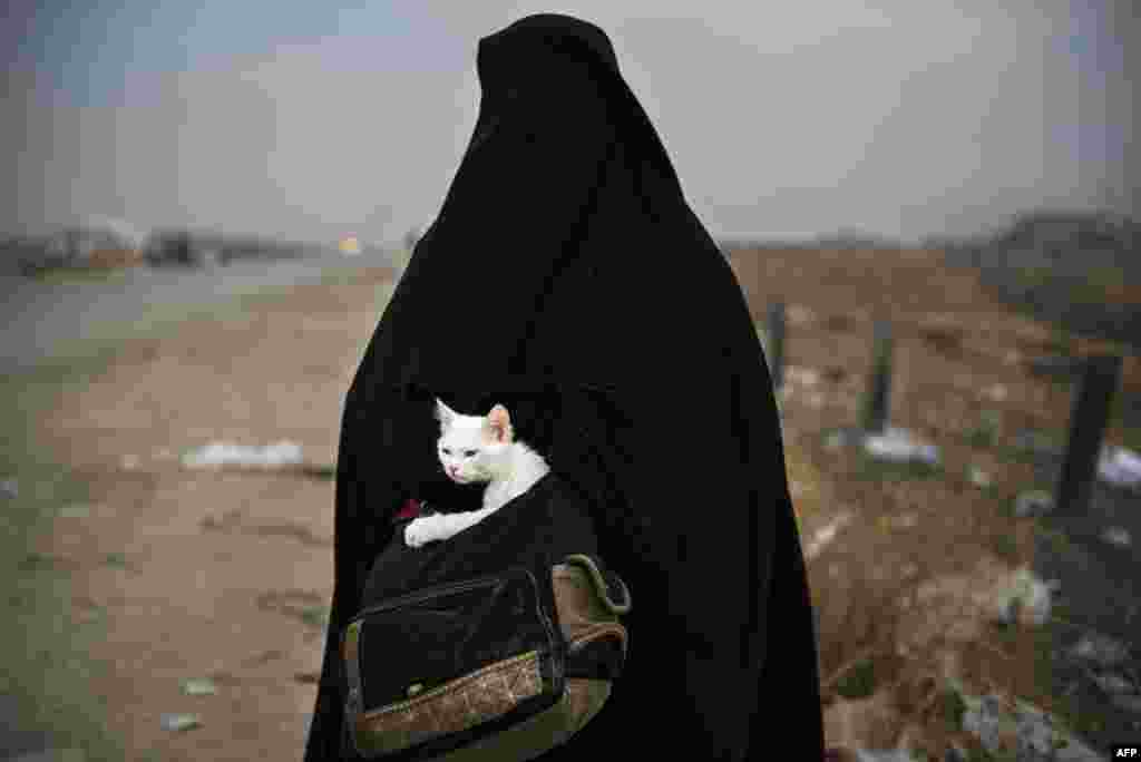 A displaced Iraqi woman holds her cat, Lulu, as she waits for transport in the Iraqi Kurdish checkpoint village of Shaqouli, about 35 kilometers east of Mosul, after she fled her home in the embattled city with her children and took refuge at a camp in Irbil. Iraqi forces are taking part in an operation to recapture Iraq's second city from Islamic State militants. (AFP/Odd Andersen)