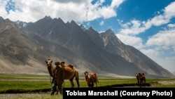 Ptukh, Wakhan Corridor. Bactrian camels tread pathways that Marco Polo reportedly walked on.
